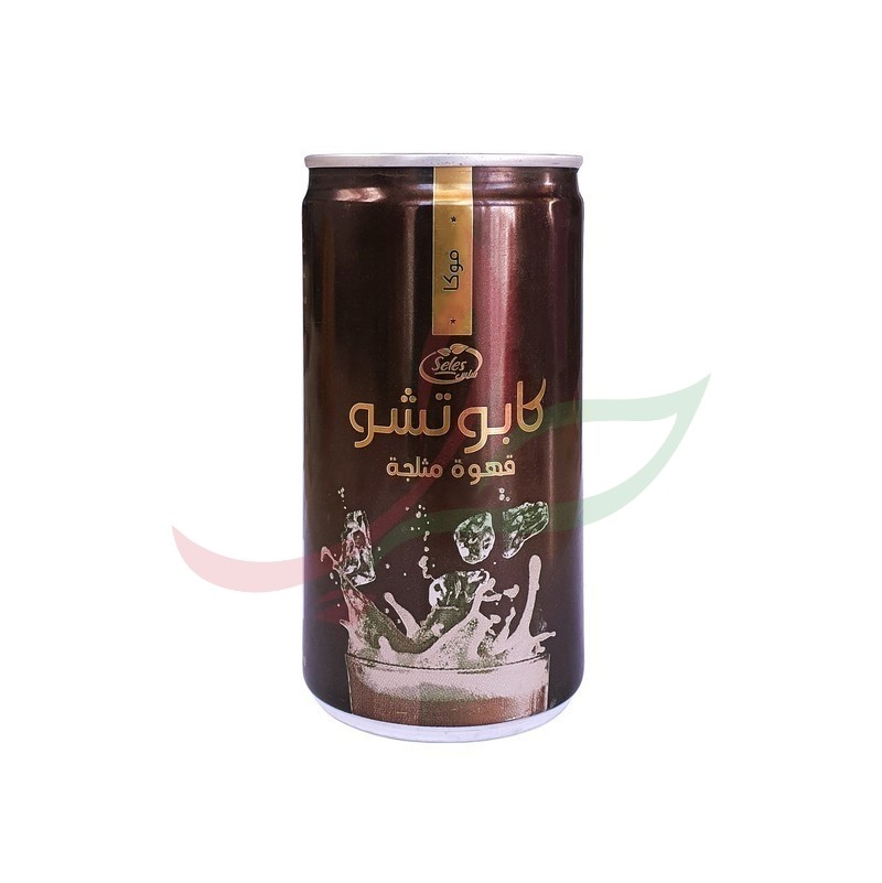 Café glacé goût moka Seles 180ml